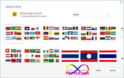 inset picture search